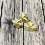 Brushed Gold 6-Point Star Brads(50個入り)