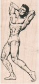 Muscle Man 1 1/2 x 3